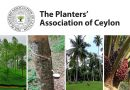 A 167 year legacy; The Planters' Association to host its first virtual AGM